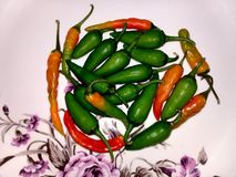 Beautiful and attractive indian green chilly stock photos