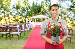 I arranging flowers for your wedding Stock Image