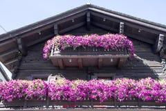 I balconi hanno allineato con i fiori sboccianti, Livigno, Italia Fotografie Stock Libere da Diritti