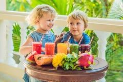 I bambini bevono i frullati sani variopinti L'anguria, la papaia, il mango, gli spinaci ed il drago fruttificano Frullati, succhi fotografia stock libera da diritti