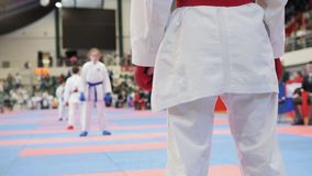 I bambini di sport - sportivi femminili su karatè - aspettano per la lotta immagini stock libere da diritti