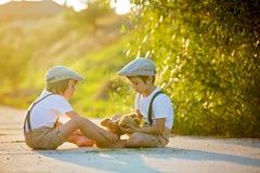 I bambini dolci, i fratelli del ragazzo, giocanti con l'orsacchiotto riguardano un piccolo Fotografia Stock