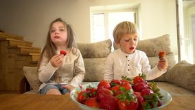 I bambini dolci il fratello e sorella mangiano le fragole mature fresche Colpo tenuto in mano archivi video