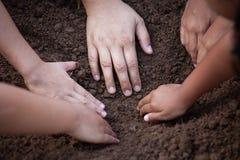 I bambini e l'aiuto del genitore preparano il suolo per la piantatura insieme Fotografia Stock