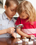 I bambini stanno considerando le pietre della lente d'ingrandimento Fotografie Stock Libere da Diritti