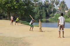 I bambini stanno giocando il cricket Fotografia Stock Libera da Diritti