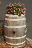 I barilotti della quercia decorano il fiore Immagini Stock Libere da Diritti