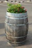I barilotti della quercia decorano il fiore Fotografia Stock Libera da Diritti
