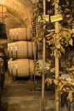 I barilotti di vino ed il formaggio di pecorino formaggi italiani a pasta dura fatti dal ` s della pecora mungono in una cantina  Fotografia Stock