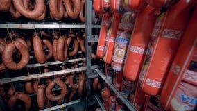 I bastoni della salsiccia del Polony e le salsiccie di Cracovia sono indicati in una funzione di stoccaggio illustrazione di stock
