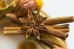 I bastoni di cannella, fiori di badian o anice, hanno asciugato le arance ed i limoni Fotografia Stock