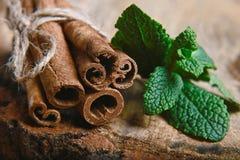 I bastoni torti primo piano di cannella impacchettano, foglie verdi della menta fresca, il fuoco selettivo, il marco, insieme immagini stock