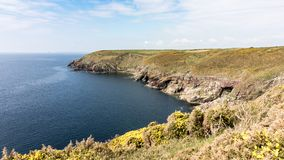 I bei litorali verdi dell'Irlanda durante il tempo di molla immagine stock libera da diritti