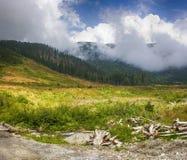 I bergen Arkivbilder