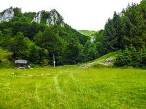 I bergen Arkivfoto