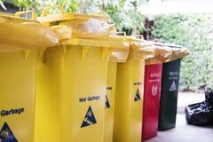 I bidoni della spazzatura dell'immondizia, separati bagnano, il pericolo, asciugano e riciclano la profondità di campo bassa del  Immagini Stock