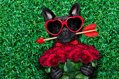 I biglietti di S. Valentino inseguono nell'amore Immagini Stock Libere da Diritti