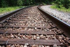I binari ferroviari allungano nella foresta Immagini Stock Libere da Diritti