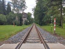 I binari ferroviari si avvicinano alla foresta fotografia stock libera da diritti