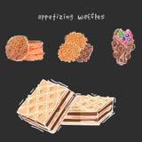 I biscotti differenti del wafer waffle vettore croccante dell'alimento del forno del dessert alla panna delizioso dello spuntino  illustrazione di stock