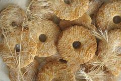 I biscotti hanno superato con lo zucchero Fotografie Stock Libere da Diritti