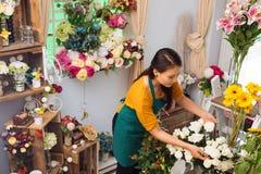 I blomsterhandel fotografering för bildbyråer