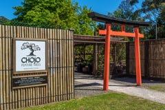 I bonsai di Chojo comperano e scuola materna in sasso frasso, Victoria, Australia Fotografia Stock Libera da Diritti