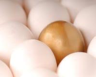 I bordi dorati dell'uovo dalle uova bianche Fotografia Stock Libera da Diritti