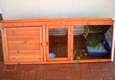 I bought a bunny hutch! Royalty Free Stock Photo
