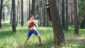 I boxninghandskar slåss den unga idrotts- mannen med den kala nakna torson, askar, övningar tekniken av slag, med arkivfilmer