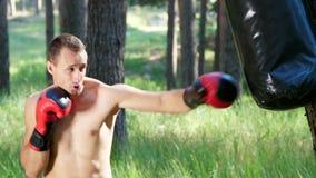 I boxninghandskar slåss den unga idrotts- mannen med den kala nakna torson, askar, övningar tekniken av slag, med stock video