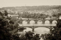 I brigdes di Praga immagine stock