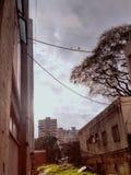 I Buenos Aires royaltyfri bild