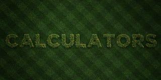 I CALCOLATORI - lettere fresche dell'erba con i fiori ed i denti di leone - 3D hanno reso l'immagine di riserva libera della sovr illustrazione vettoriale