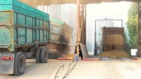 I camion stanno scaricando il grano stock footage