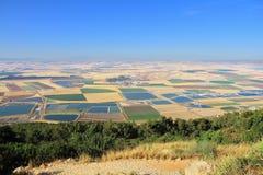 I campi colorati della valle del Galilee Fotografie Stock