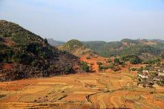I campi ed il fiume in villiage di bama fotografia stock libera da diritti