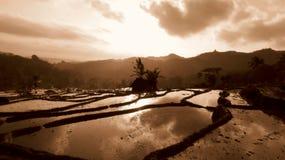 I campi erano ancora vuoti Fotografia Stock Libera da Diritti
