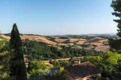 I campi rurali medi di vacanza estiva dell'Italia chiedono le colline tenere Fotografie Stock