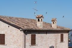 I campi rurali medi di vacanza estiva dell'Italia chiedono le colline tenere Fotografia Stock