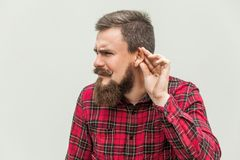 I can not hear you. Young adult bearded man listen. Studio shot, gray background Stock Image
