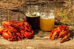 I Cancri alla birra, gambero bollito, la birra fa un spuntino fotografie stock libere da diritti
