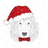 I cani di razza sono disegnati a mano Vettore del cane Insegua in cappello di Natale spaniel Fotografia Stock Libera da Diritti