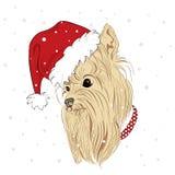 I cani di razza sono disegnati a mano Vettore del cane Insegua in cappello di Natale Yorkshire terrier Immagine Stock