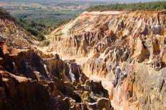 I canyon rossi in mezzo della foresta in Ankarafantsika, Madagascar, Fotografie Stock