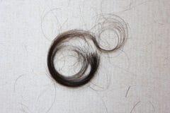 I capelli neri sono tagliati Fotografia Stock Libera da Diritti