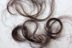 I capelli neri sono tagliati Fotografie Stock Libere da Diritti