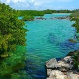 I Caraibi in akumal Fotografia Stock