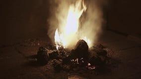 I carboni bruciano nella stufa al fabbro Preparazioni per il pezzo fucinato del metallo stock footage