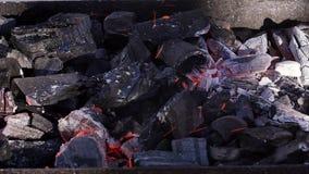 I carboni brucianti per il barbecue grigliano, lasso di tempo stock footage